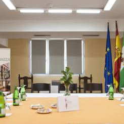 MEETINGS AND EVENTS TRH Ciudad de Baeza Hotel - Baeza